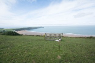 Woolacombe Down Bench